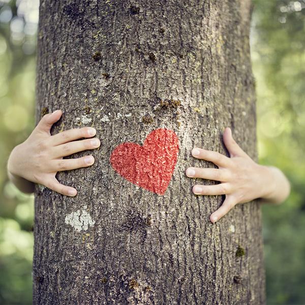 heart on tree on hands