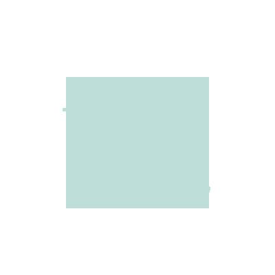 TikTok Icon